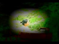 【ジャネス】ある秘湯に訪れた客を狙い潜入した関係者が盗撮カメラで撮られてるとも知らずに好き放題ヤリまくる #004