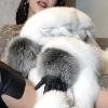 Fur Addiction - Fur Fetish POV video -
